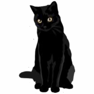Cat PNG, Backgrounds and Vectors Free Download.