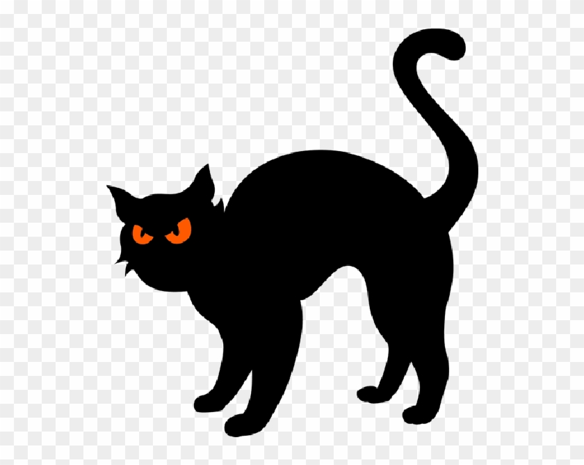 Black cat clip art halloween clipart free transparent png.