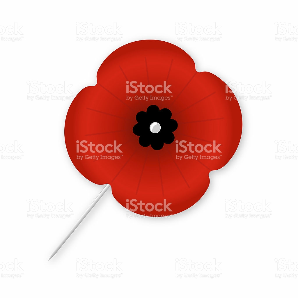 Isolated Poppy With Black Centre stock photo 172663954.
