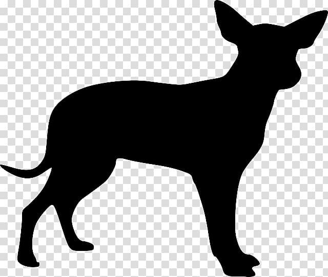 Boxer Bull Terrier Dobermann Chihuahua Puppy, Black dog.