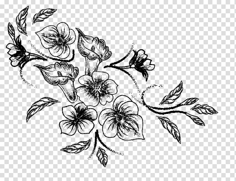 Spring flowers , black flowers sketch transparent background.