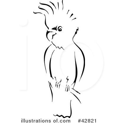 Cockatoo Clipart #42821.