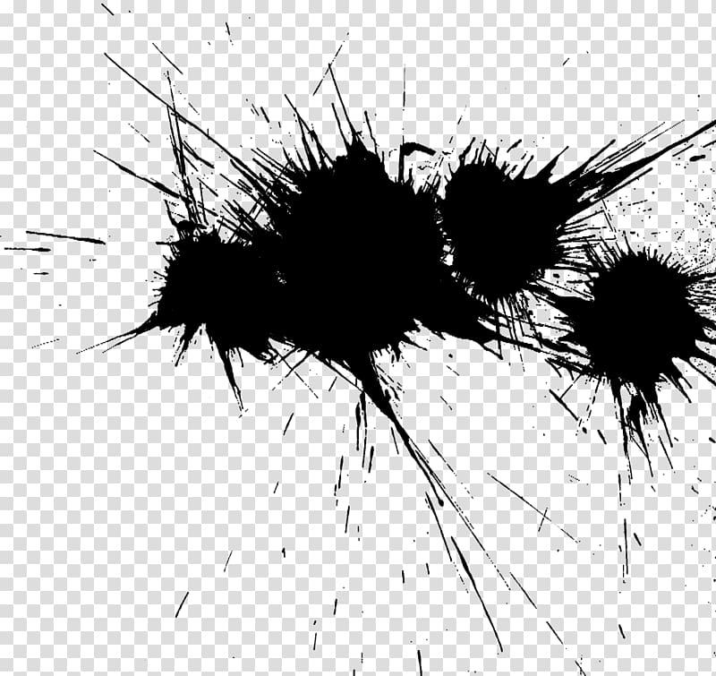 Black and white , colour splash transparent background PNG clipart.