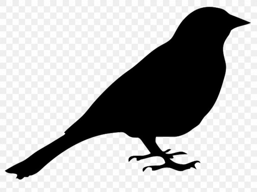 Bird Silhouette Art Clip Art, PNG, 1325x992px, Bird.