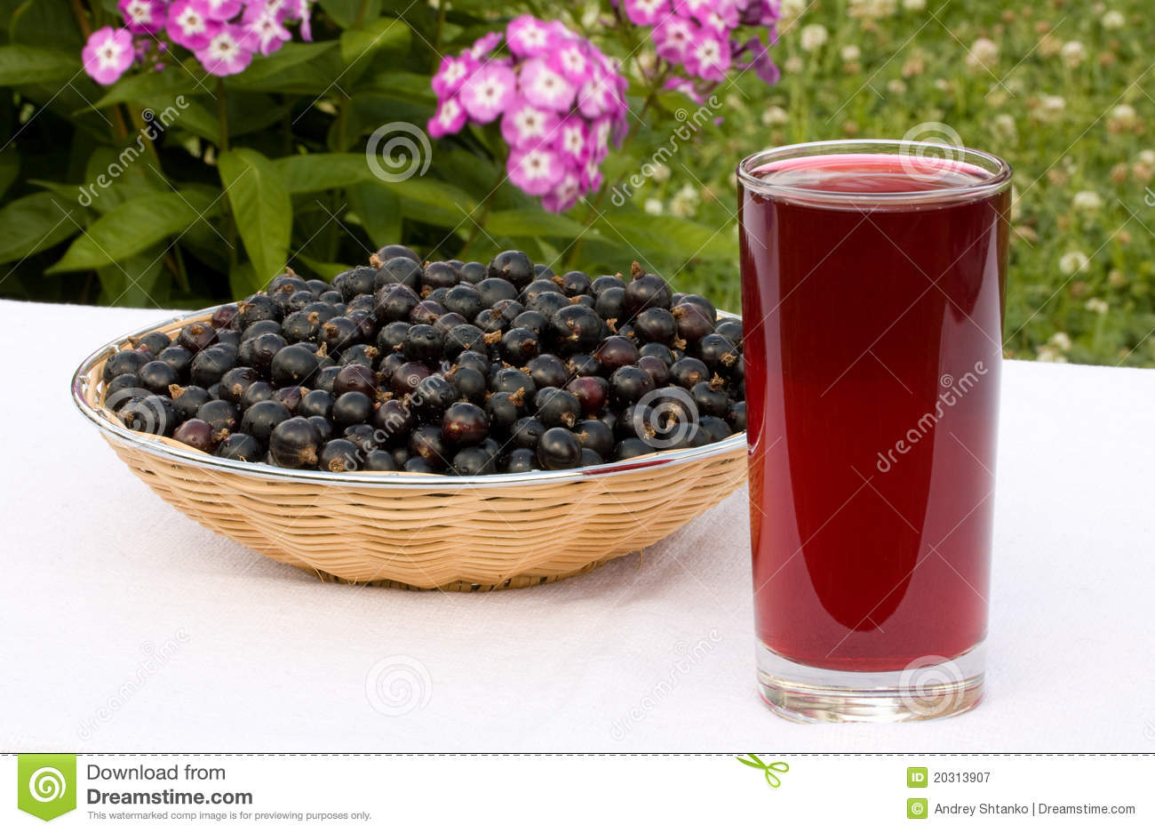 Black Currant Juice Royalty Free Stock Photos.