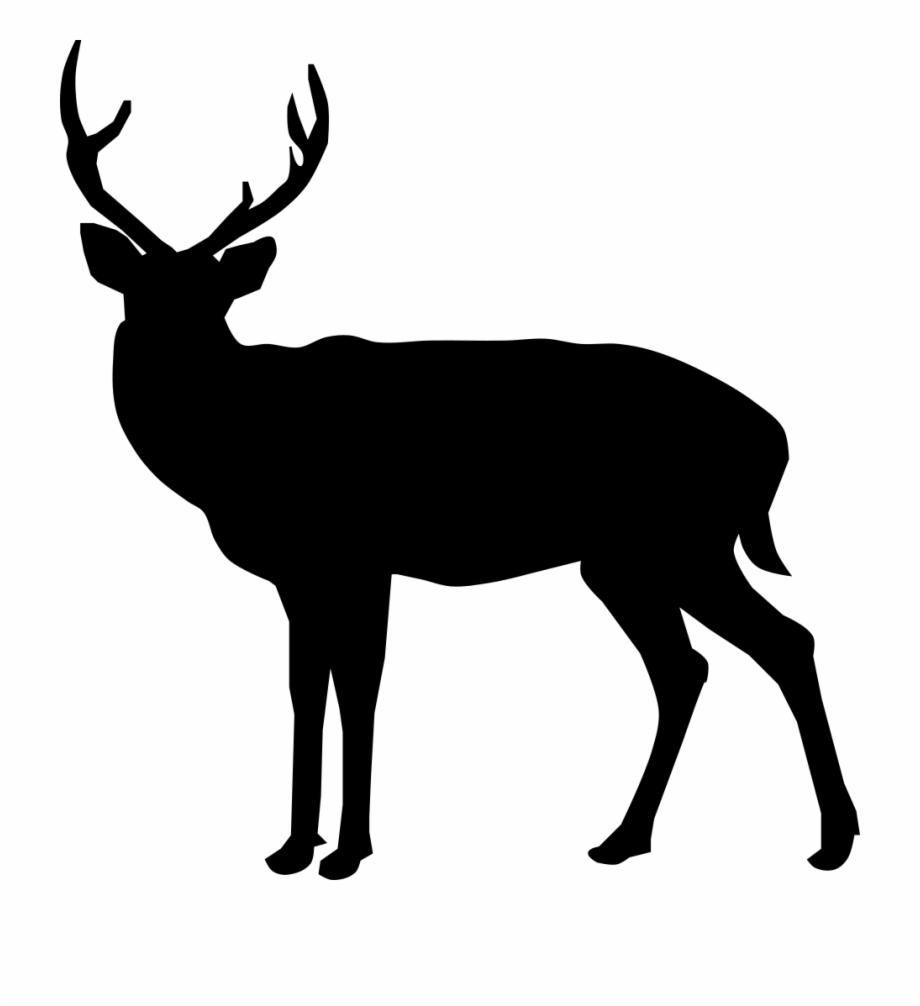 Buck Deer Silhouette.