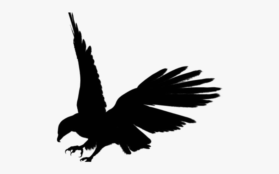 Free Flying Hawk Clipart, Download Free Clip Art, Free.