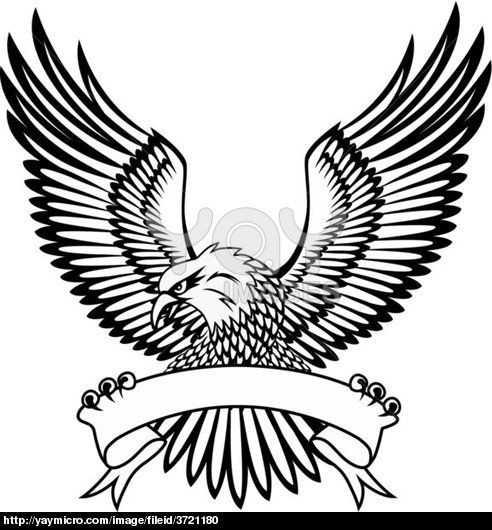 Black Eagle Logo With White Lines.
