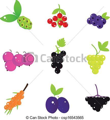 Elderberry Vector Clip Art Royalty Free. 59 Elderberry clipart.