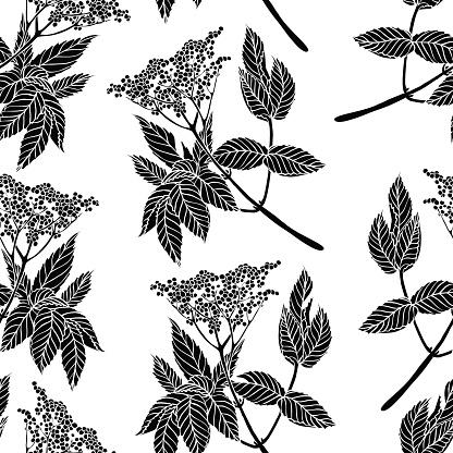 Elderberry tree black and white clipart.