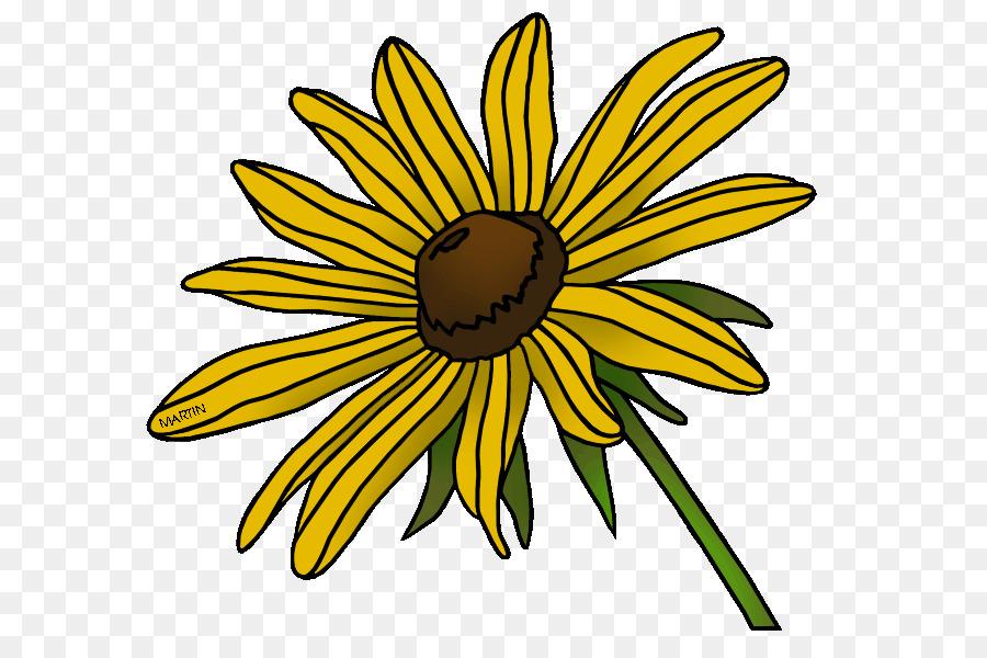 Blackeyed Susan Maryland State flower Clip art.
