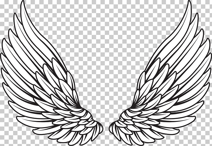 Drawing , wings angel, pair of white wings illustration PNG.