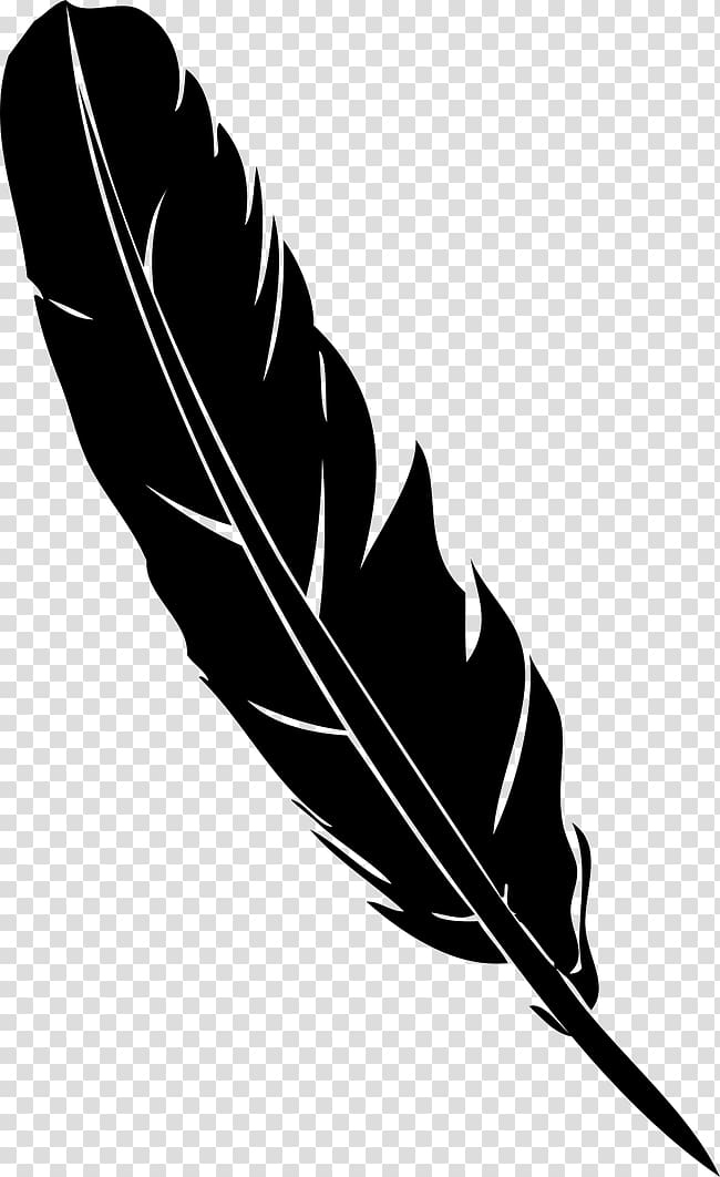 Black and gray feather illustration, Feather Pen Quill.