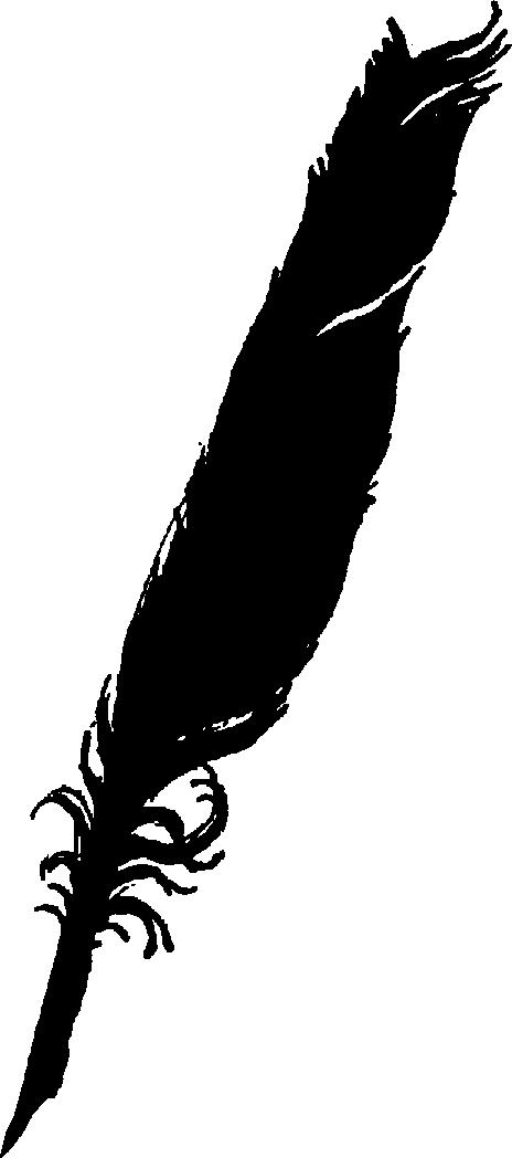 Pix For Black Feather Clip Art.