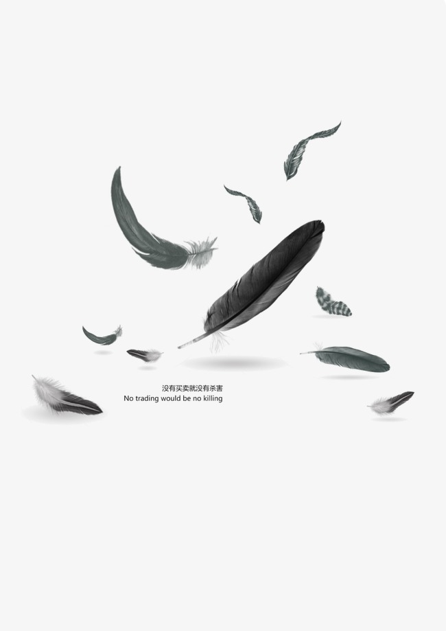 Feathers Falling PNG Images.