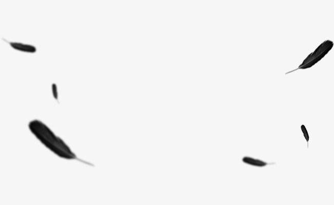 Black Feather PNG Images.