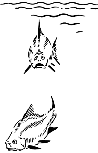 Free Fish Cartoon Clipart, 1 page of Public Domain Clip Art.