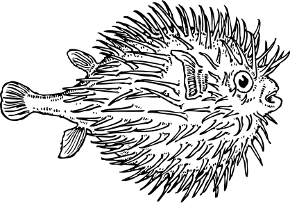 Free Fish Clipart, 3 pages of Public Domain Clip Art.