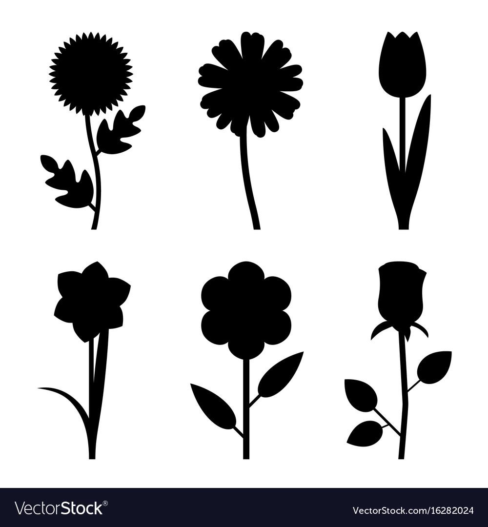 Flowers black silhouettes.