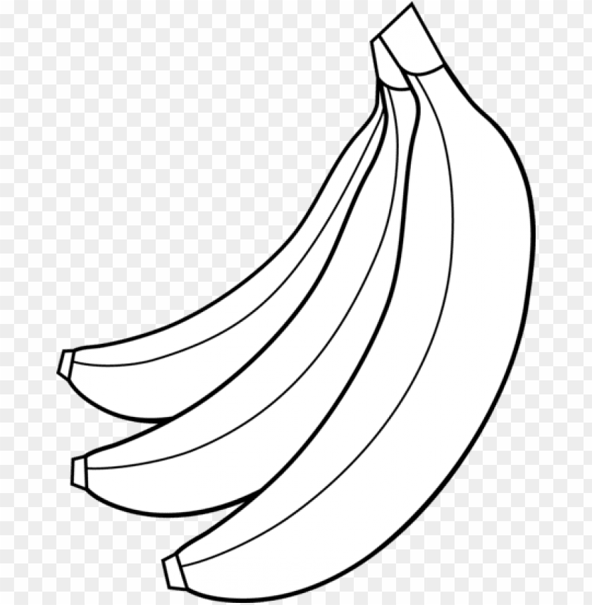 fruit clipart banana bunch.