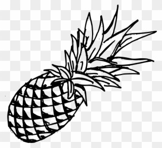 Drawing Pineapple Template.