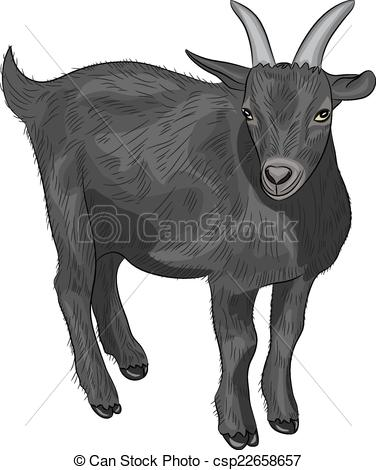 Clipart Vector of vector black goat.