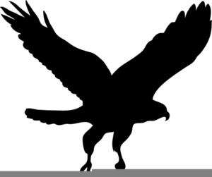 Black Hawk Clipart.