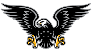 Image result for flying hawk clipart.
