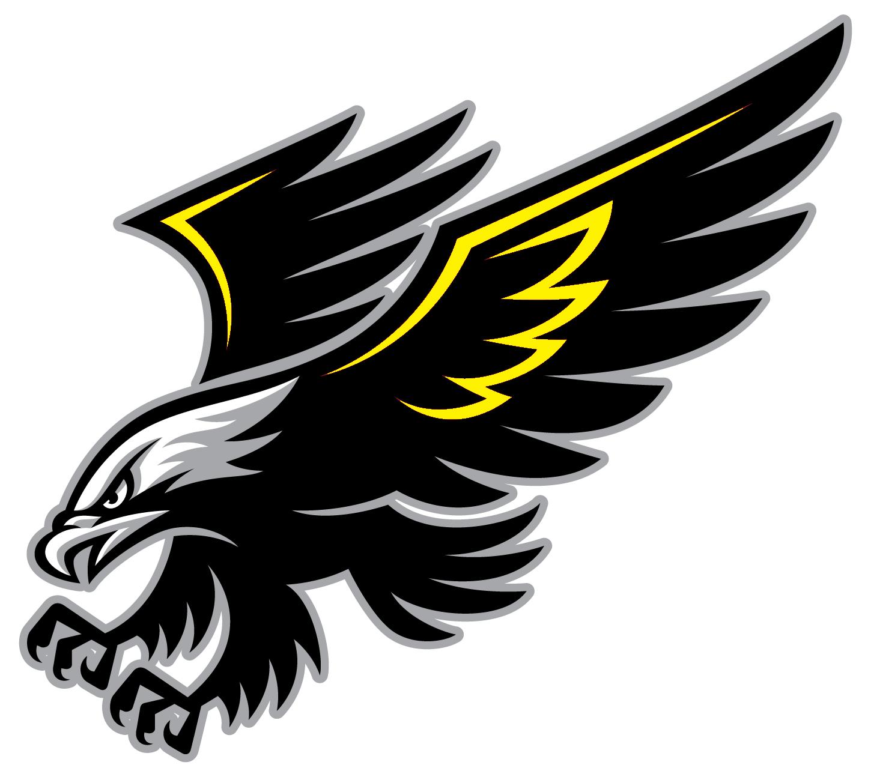 Black Hawk Bird Logo.
