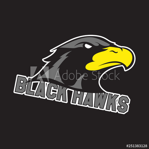 Modern professional logo for sport team. Black hawk mascot.