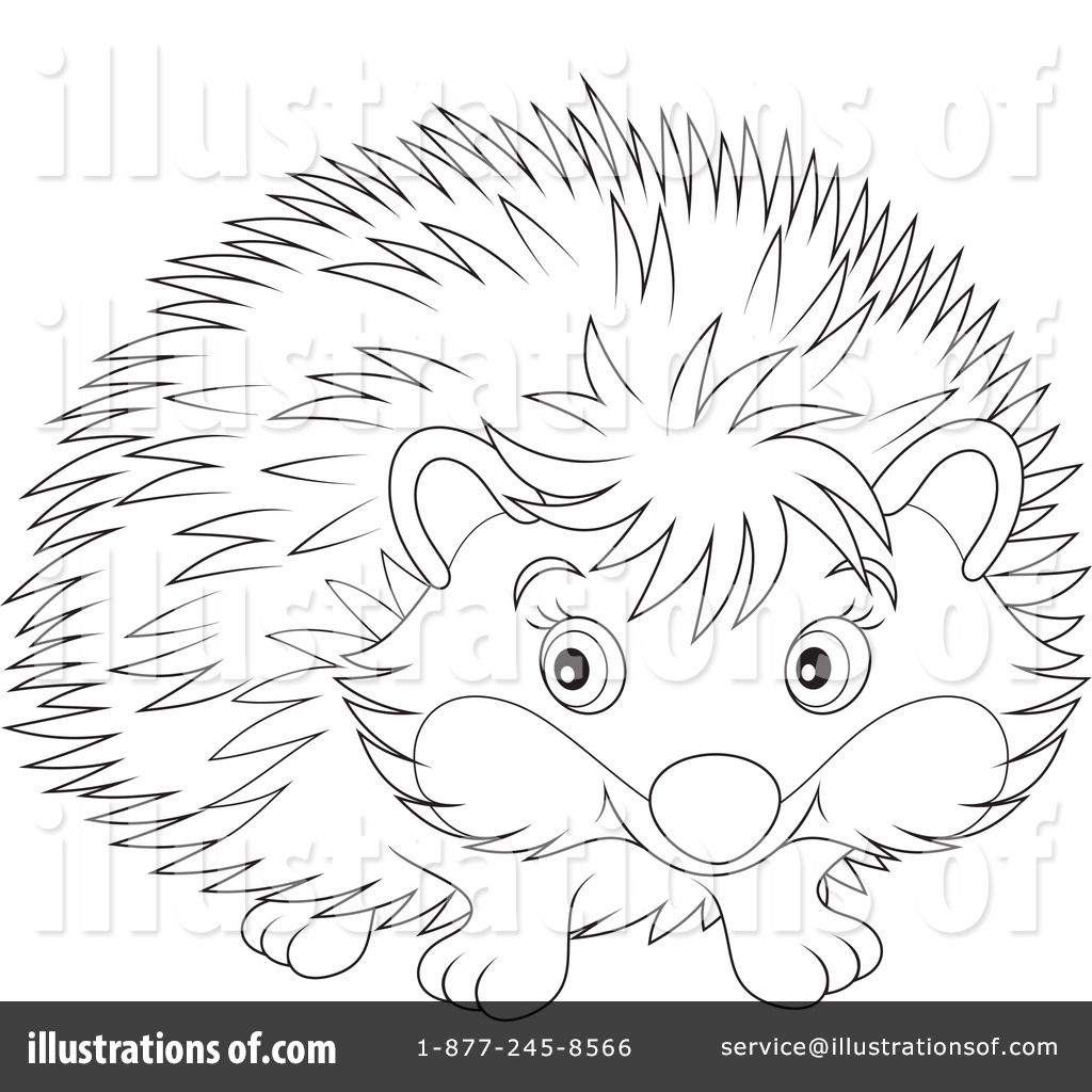 Hedgehog Clipart #1139206.