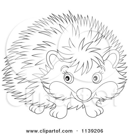 Cartoon Of A Cute Black And White Hedgehog.