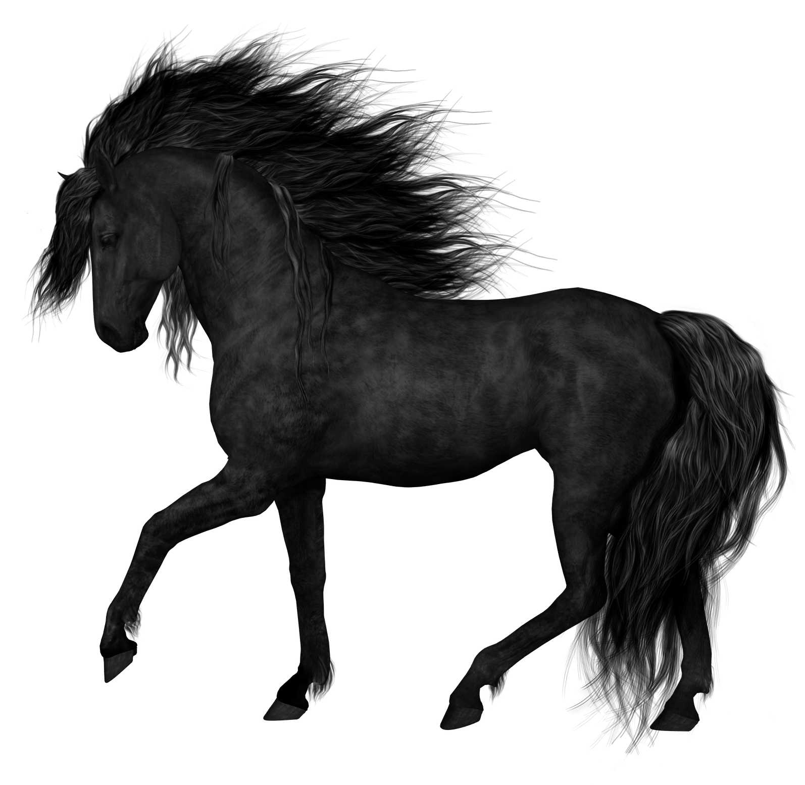 Black Horse PNG Clipart Picture.