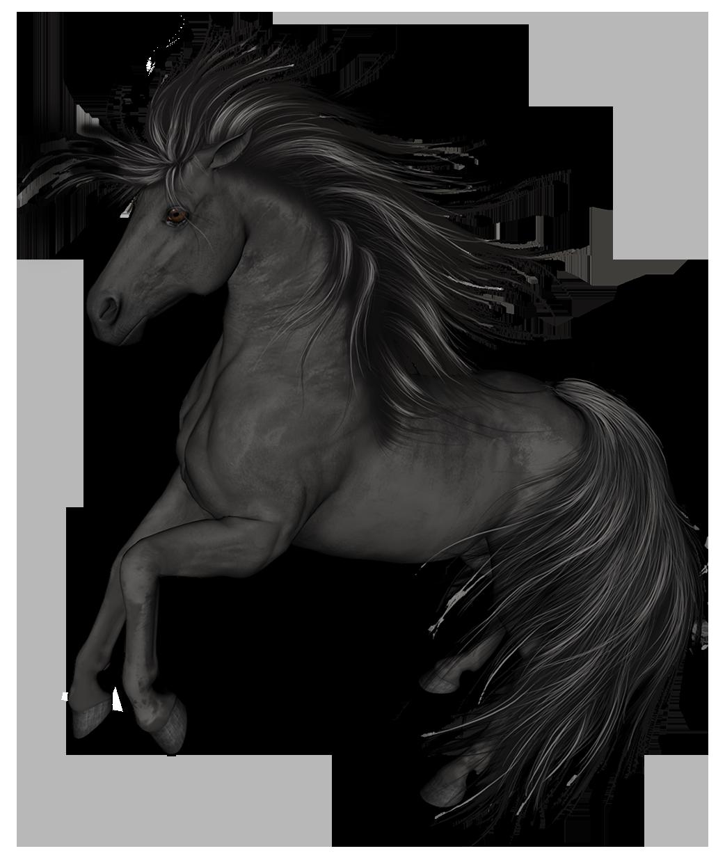 Black Horse PNG Clip Art.