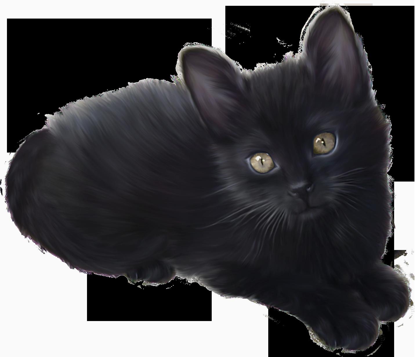 Black Kitten PNG Clipart.