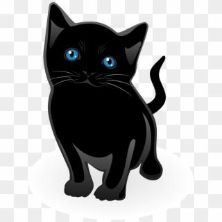 Free Kitten PNG Images.