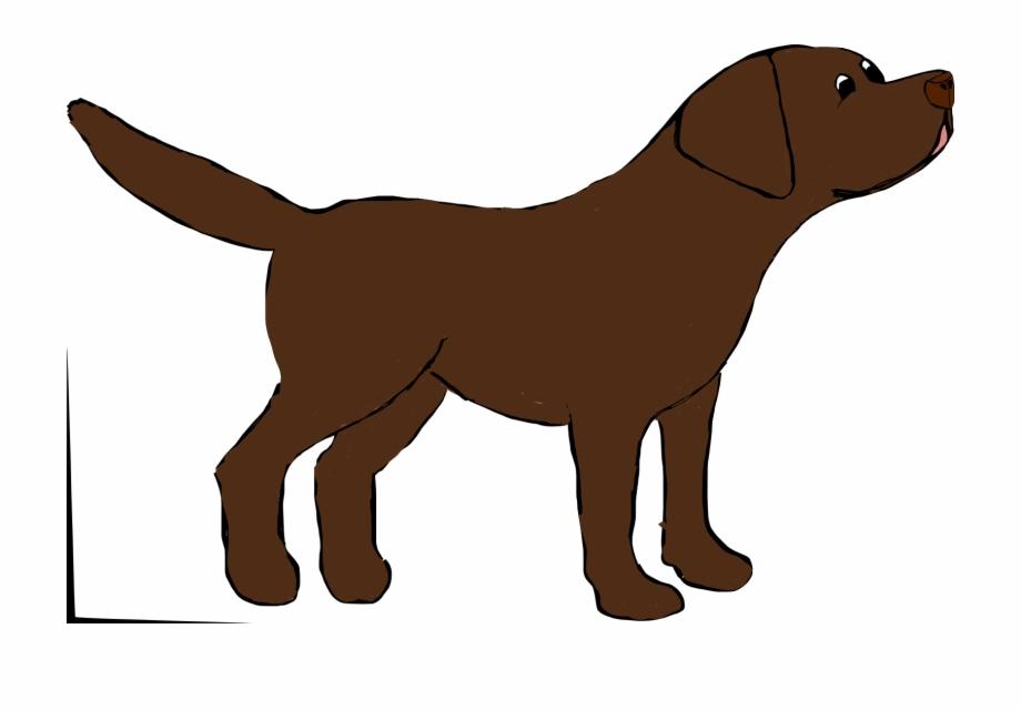 Marley The Chocolate Labrador Chocolate Lab Drawing Cartoon.