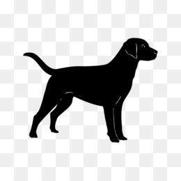 Black Labrador PNG and Black Labrador Transparent Clipart.