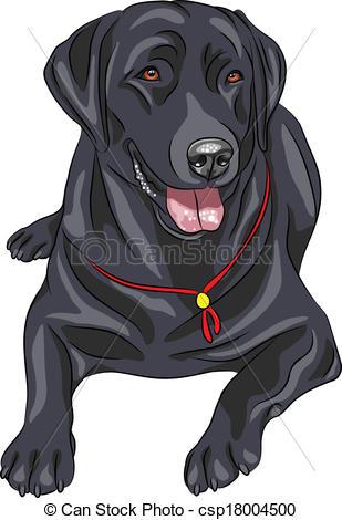 Labrador Illustrations and Stock Art. 4,907 Labrador illustration.