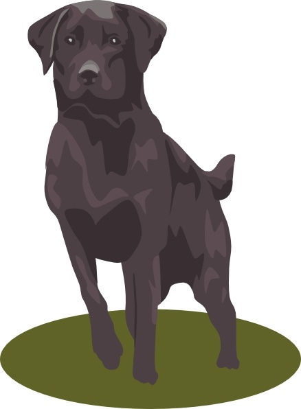 Black Lab clip art Free vector in Open office drawing svg ( .svg.