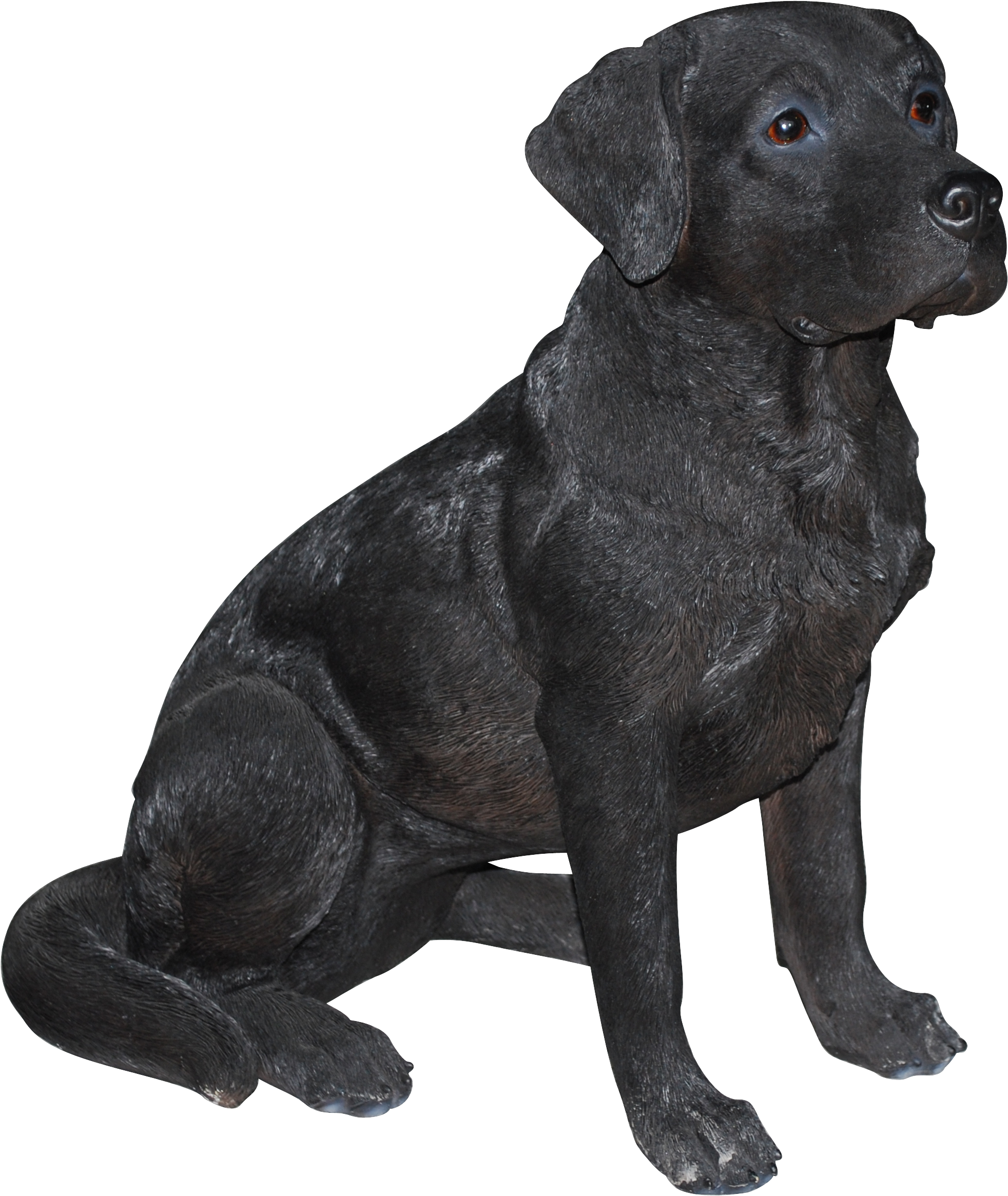 Collection of 14 free Black lab png bill clipart dollar sign.