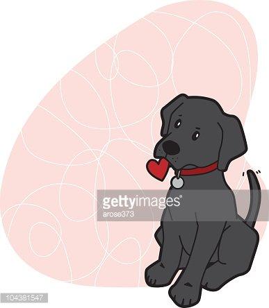 Black Labrador Puppy Love premium clipart.