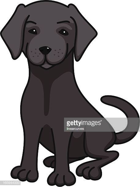 60 Top Black Labrador Stock Illustrations, Clip art, Cartoons.