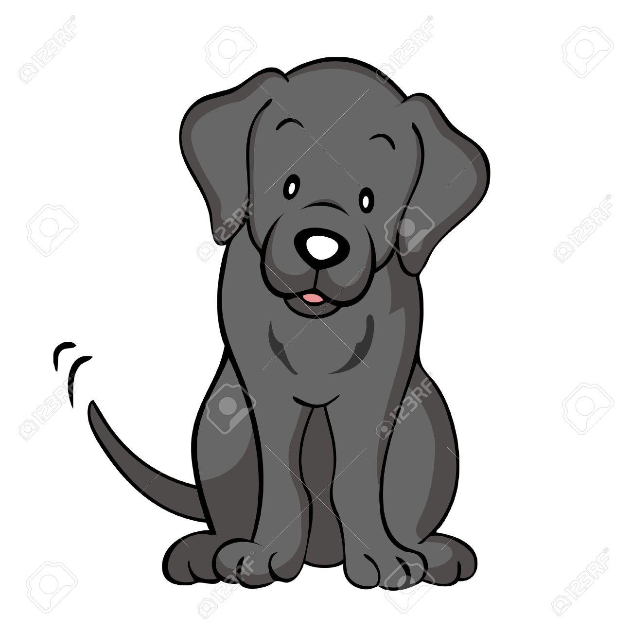 Black labrador dog isolated.