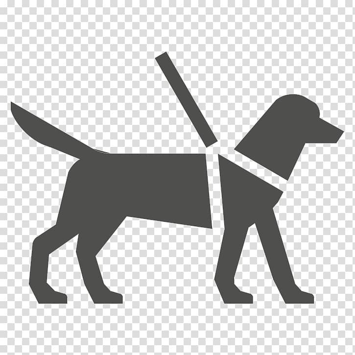 Guide dog Service animal Assistance dog Service dog, United.