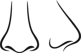 Nose clip art black and white free clipart images.