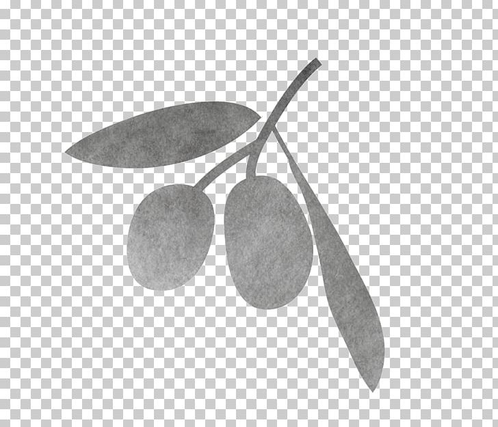 Exfoliation Cream Skin Face Olive Oil PNG, Clipart.