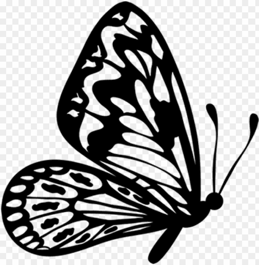 flying butterfly outline clipart.