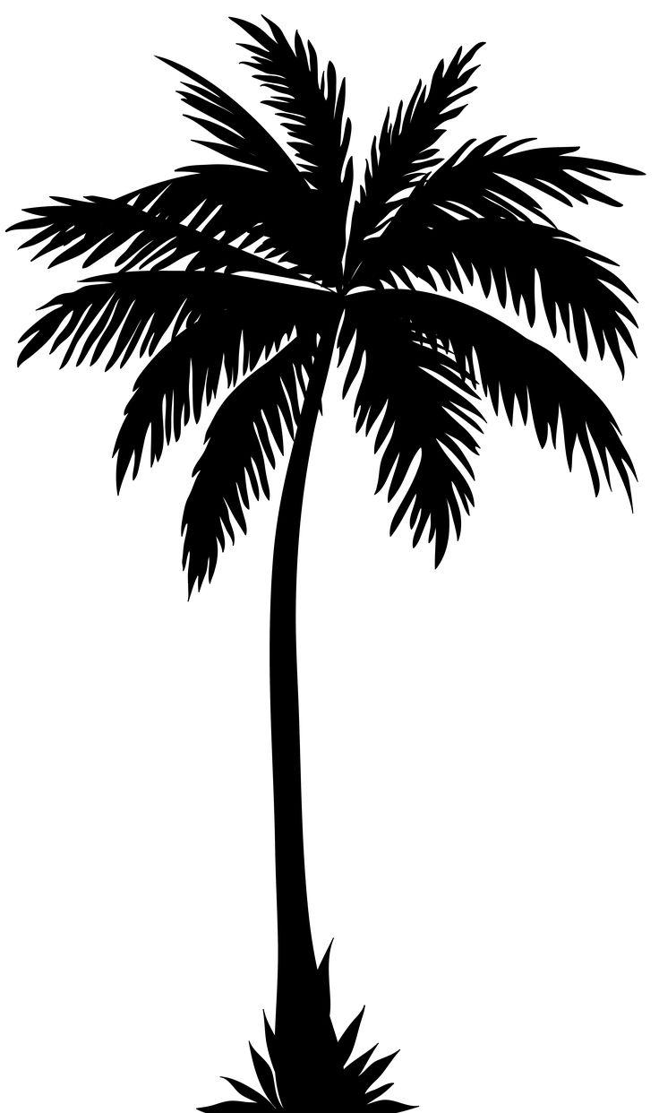 Tropical Tree Silhouette at GetDrawings.com.