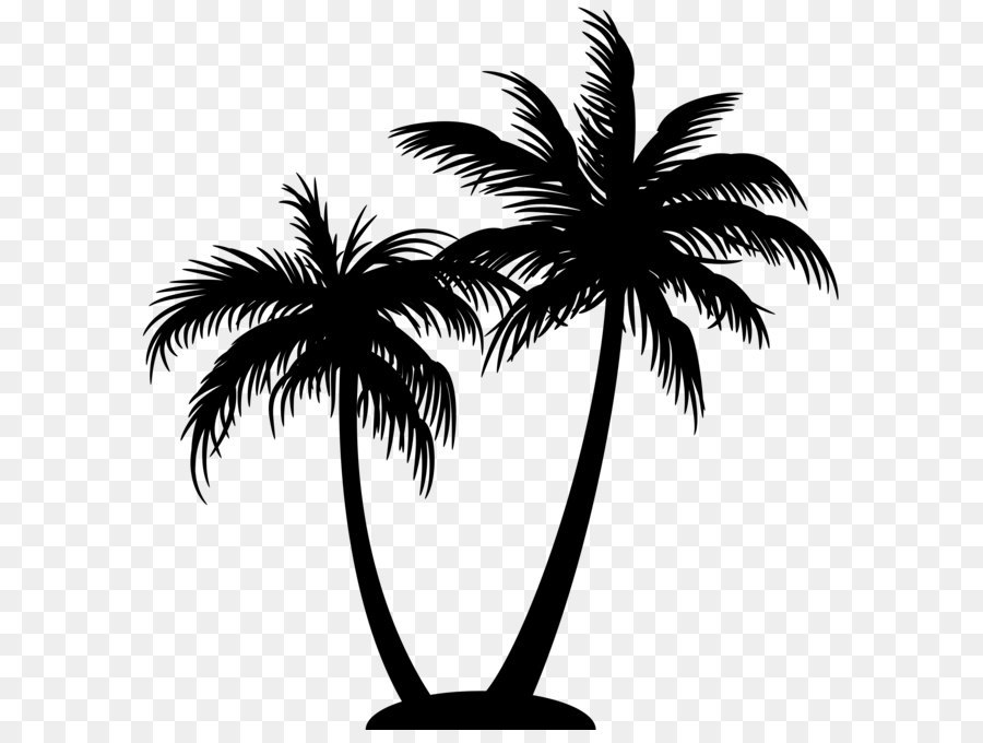 Free Palm Tree Silhouette Transparent Background, Download.